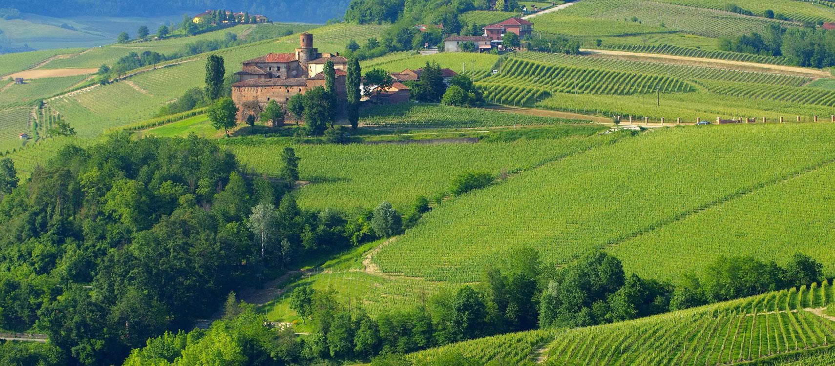 Italiaanse wijnen - Bossche Wijnkoperij